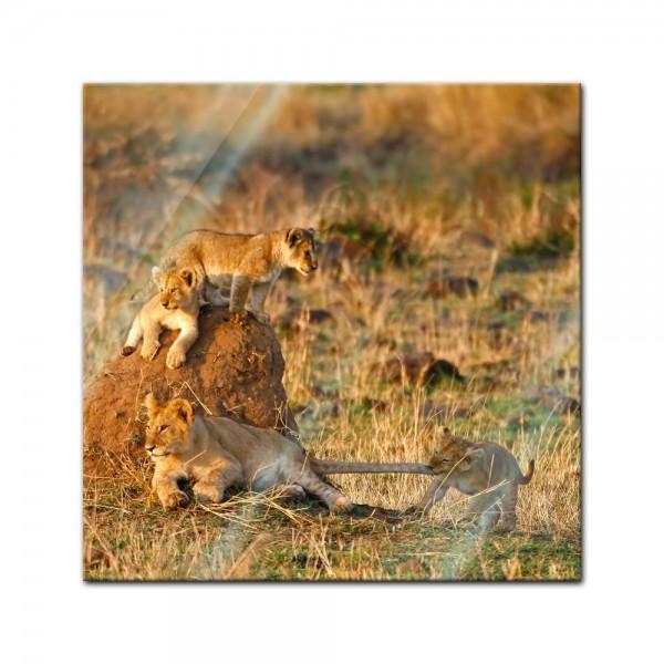 Glasbild - Löwenkinder