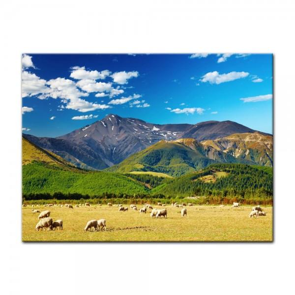 Leinwandbild - Berglandschaft - Neuseeland