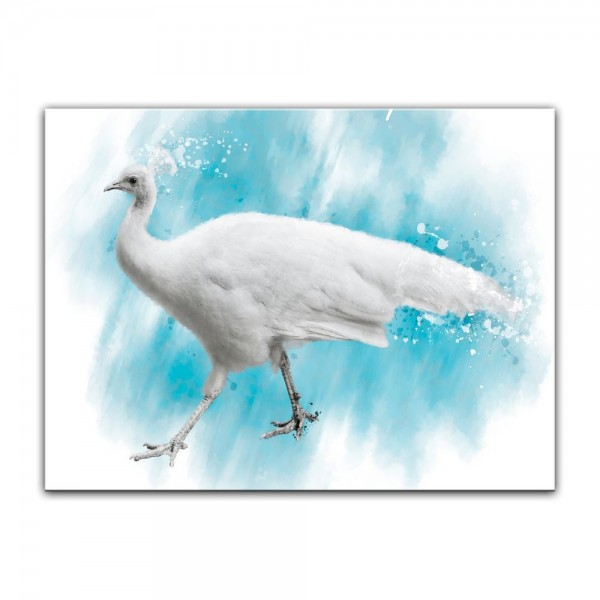 Leinwandbild - Aquarell - Weißer Pfau