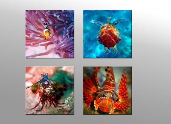 Leinwandbild Set 4 teilig Unterwasserwelt