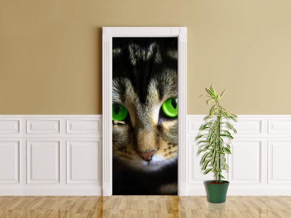 Türaufkleber - Katze mit grünen Augen