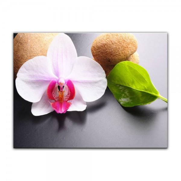Leinwandbild - Zen Steine und Orchidee