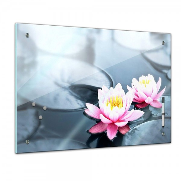 Memoboard - Pflanzen & Blumen - Lotusblüte
