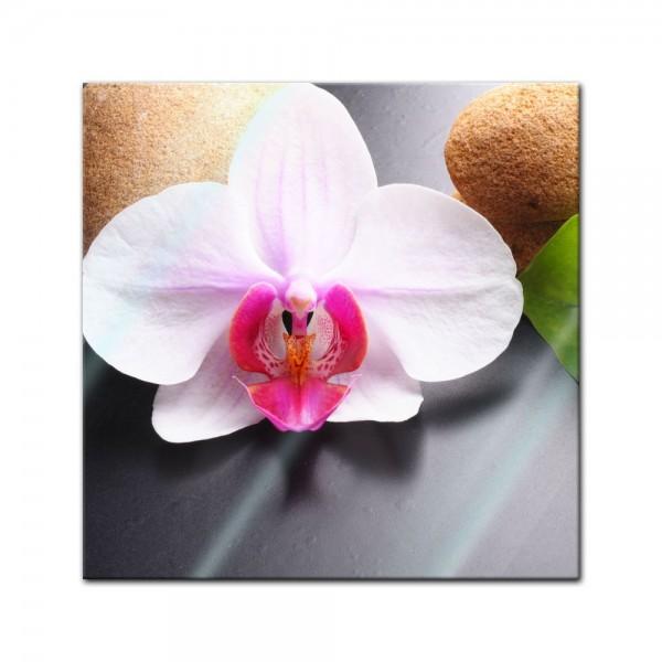 Glasbild - Zen Steine und Orchidee