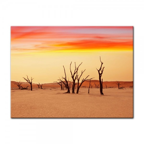 Leinwandbild - Dead Valley - Namibia