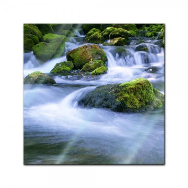Glasbild - Waldbach in Slowenien