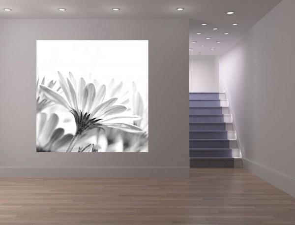 Fototapete - Blume schwarz weiß