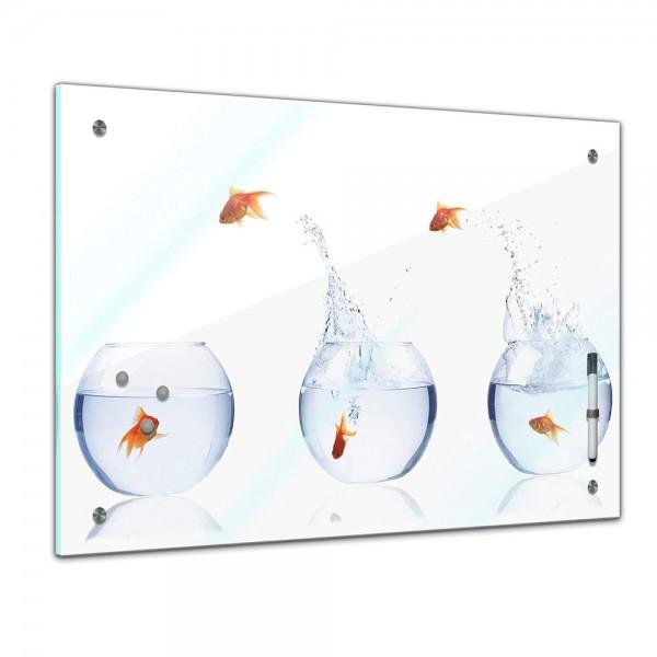 Memoboard - Tiere - springende Goldfische - Fischolympiade