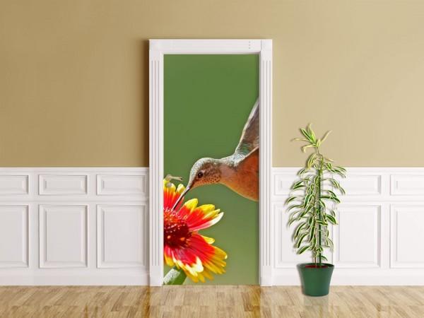 Türaufkleber - Kolibri