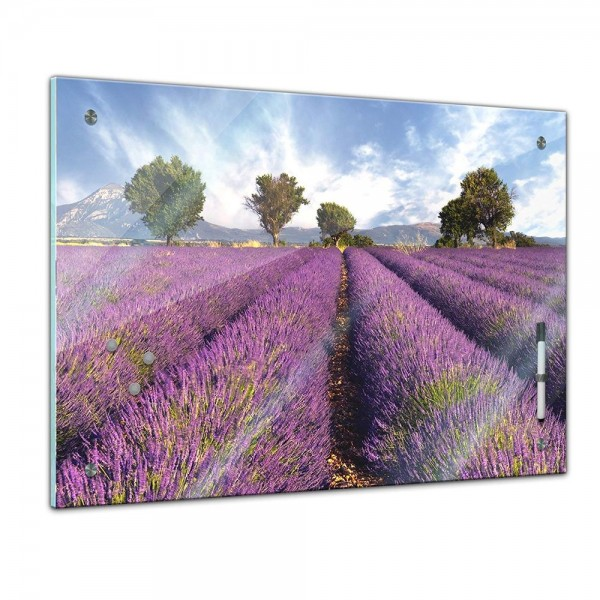 Memoboard - Landschaft - Lavendelfeld