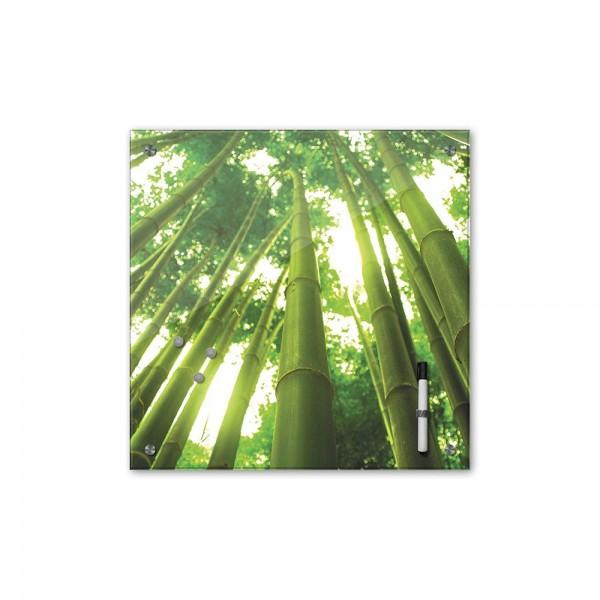 Memoboard - Pflanzen & Blumen - Bambus mit Sonnenstrahlen - 40x40 cm