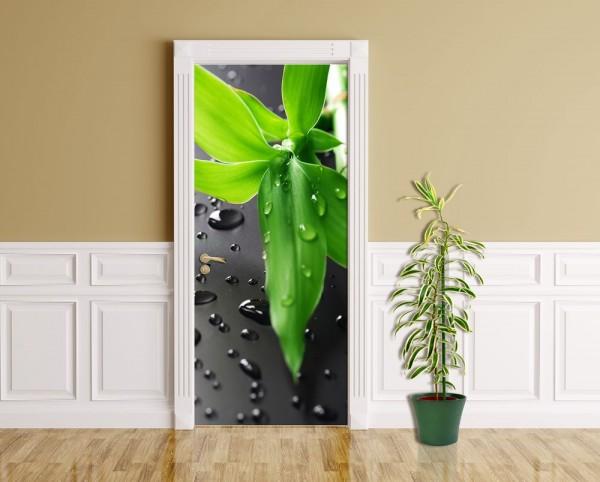 Türaufkleber - Frischer Bambus