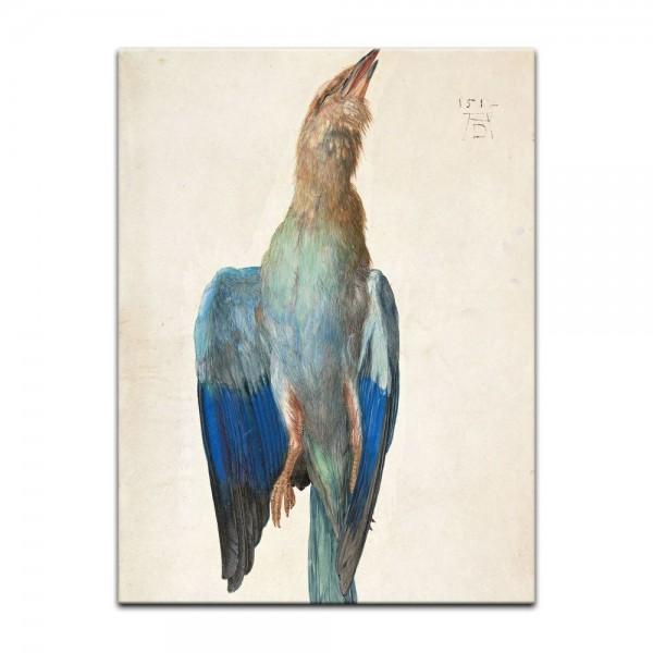 Leinwandbild - Albrecht Dürer - Aquarell - Blaue Krähe