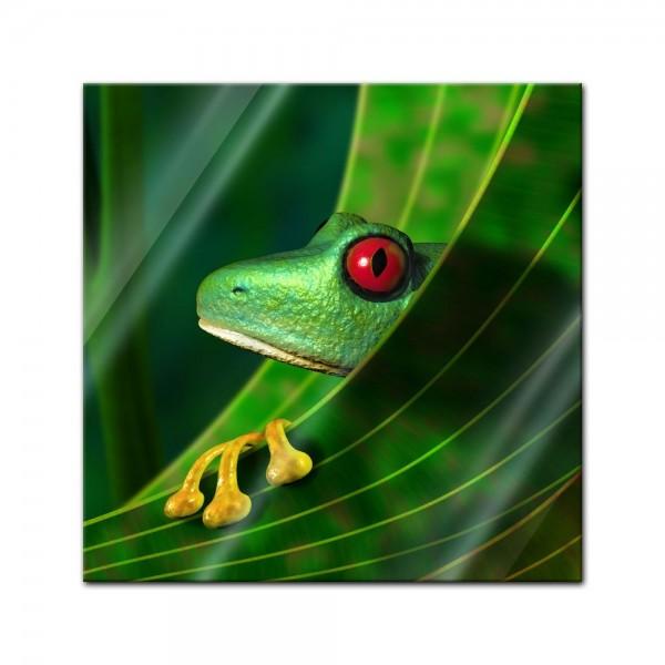 Glasbild - Frosch