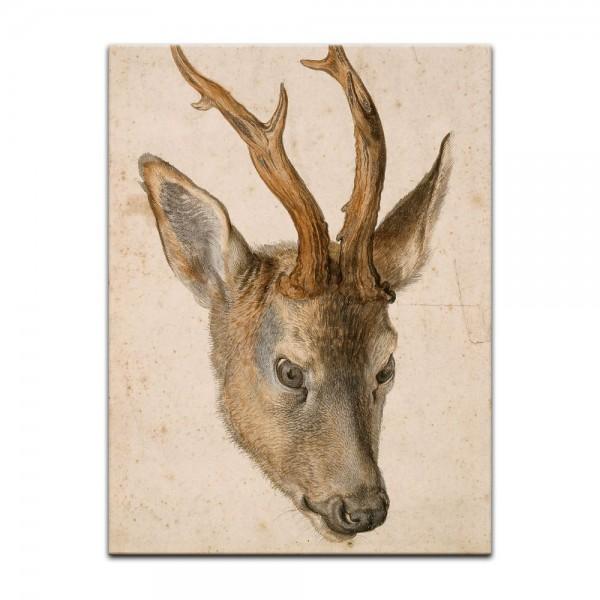 Leinwandbild - Albrecht Dürer - Aquarell - Kopf eines Rehbocks