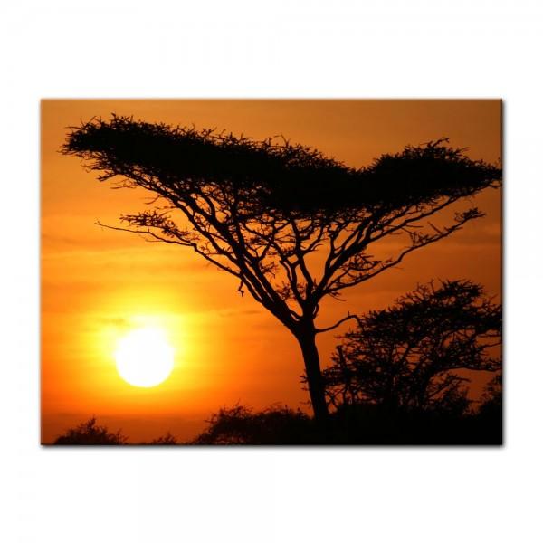 Leinwandbild - Akazienbaum im Sonnenuntergang, Tanzania Serengeti Afrika