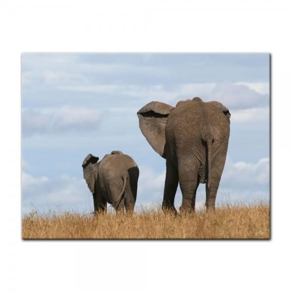 Leinwandbild - Elefantenmutter und Kind