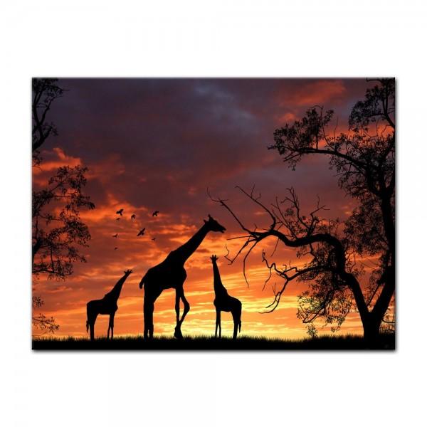Leinwandbild - Giraffen im Sonnenuntergang II