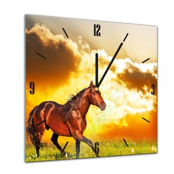 Glasuhr - Tiere - Pferd auf einer Wiese - 40x40cm