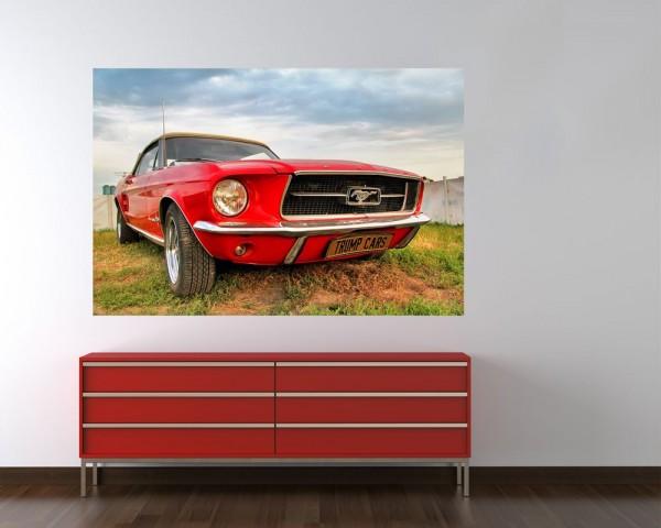 Fototapete - Mustang