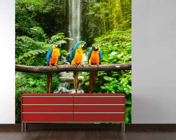 Fototapete Blau-Gelber Macaw Papagei
