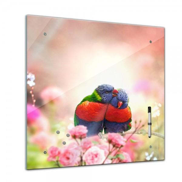 Memoboard - Tiere - verliebtes Vogelpaar - 40x40 cm