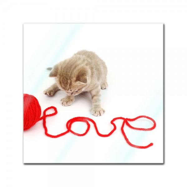 Glasbild - Katze - Love