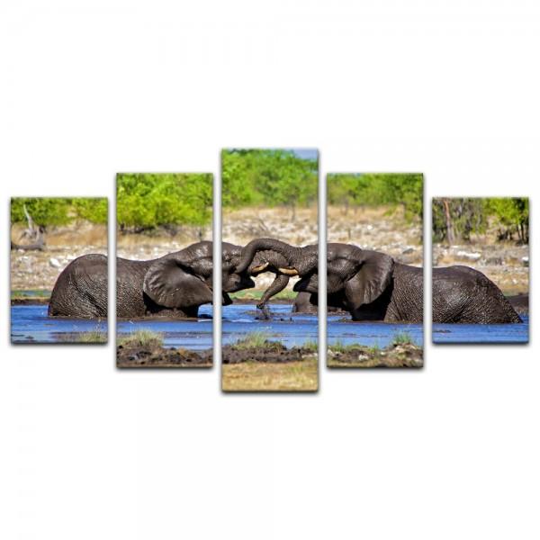 Leinwandbild - Elefanten im Wasserloch - Namibia