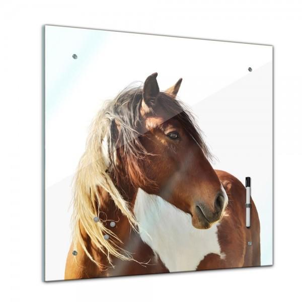 Memoboard - Tiere - Pferd Portrait - 40x40 cm