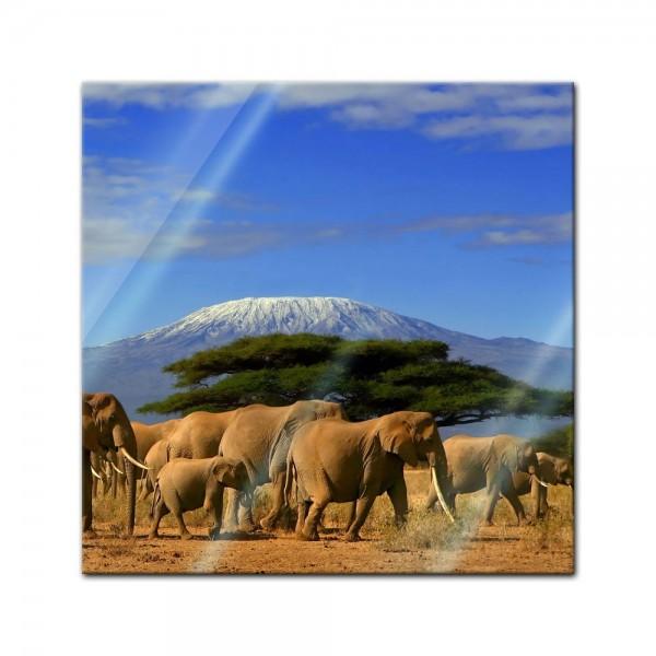 Glasbild - Elefanten am Kilimandscharo