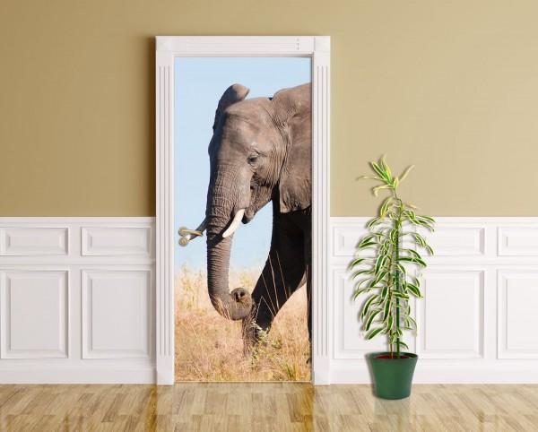 Türaufkleber - Elefant II