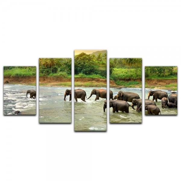 Leinwandbild - Elefanten im Fluss