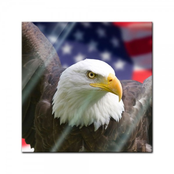 Glasbild - American Eagle mit Flagge