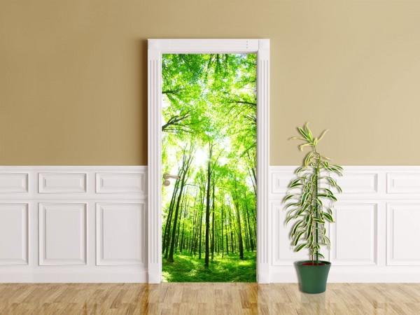 Türaufkleber - Grüner Wald