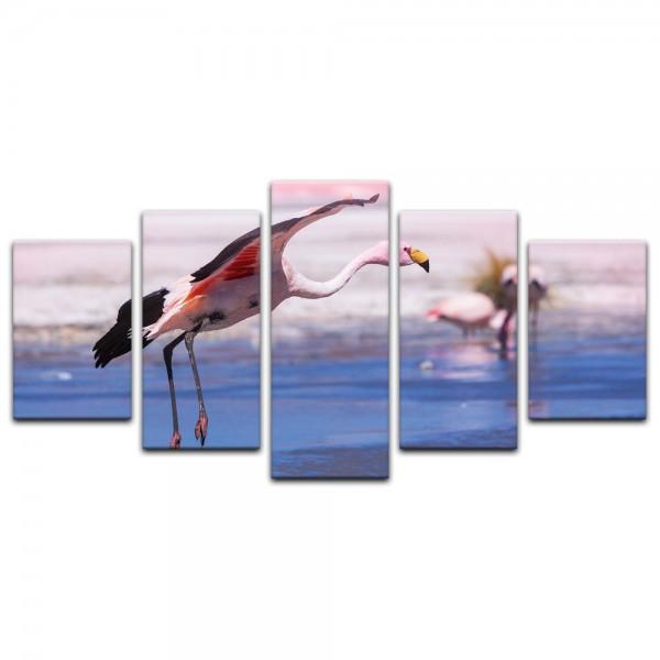 Leinwandbild - Flamingo im Flug