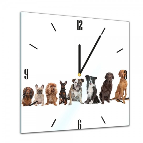 Glasuhr - Tiere - Hundebande - 40x40cm