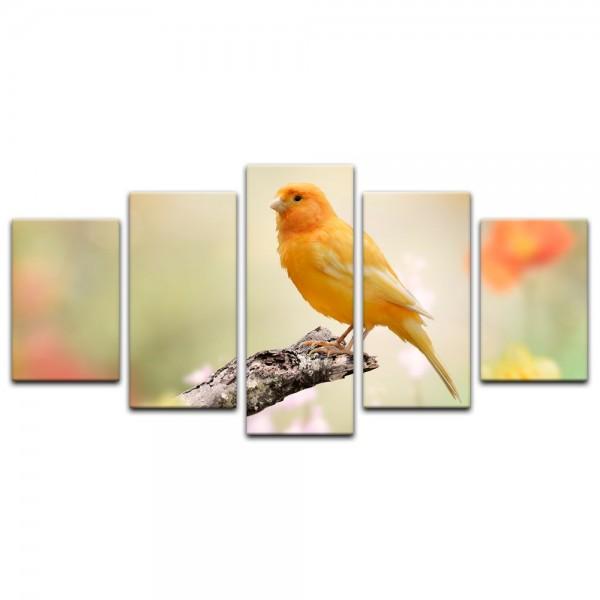 Leinwandbild - gelber Vogel