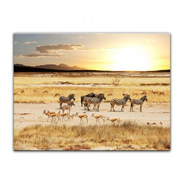 Leinwandbild - Afrikanische Savanne