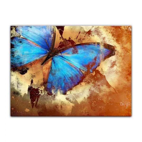 Leinwandbild - Schmetterling