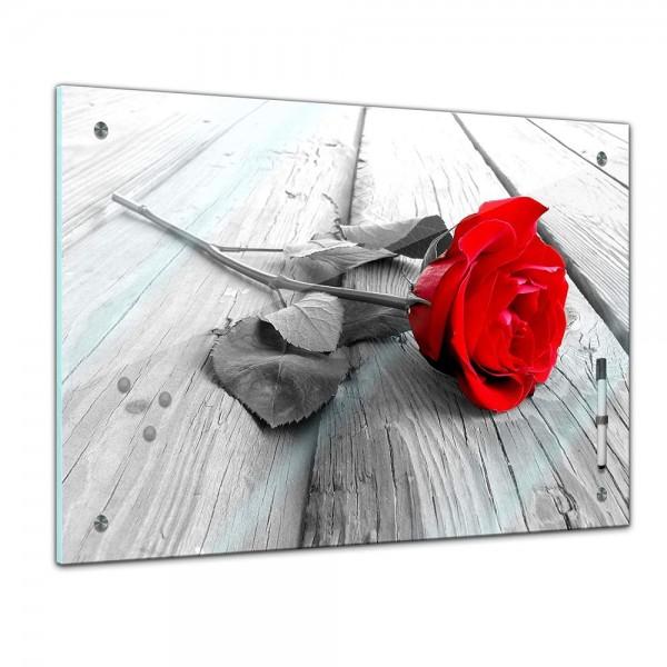 Memoboard - Pflanzen & Blumen - Rose Steg