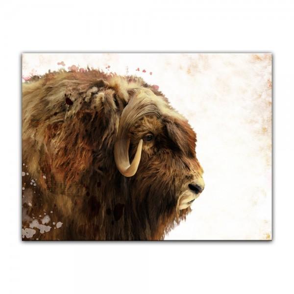 Leinwandbild - Aquarell - Büffel