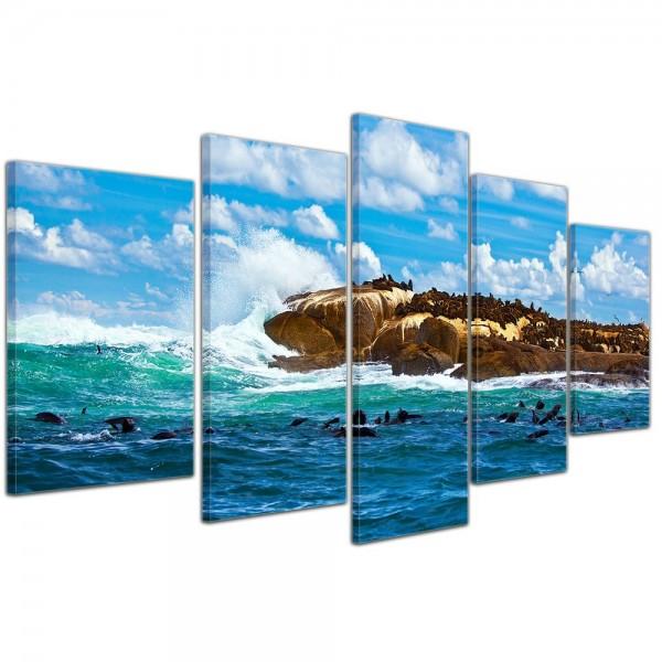 SALE Leinwandbild - Südafrika Seal Island - Robben Insel - 100x50 cm 5tlg