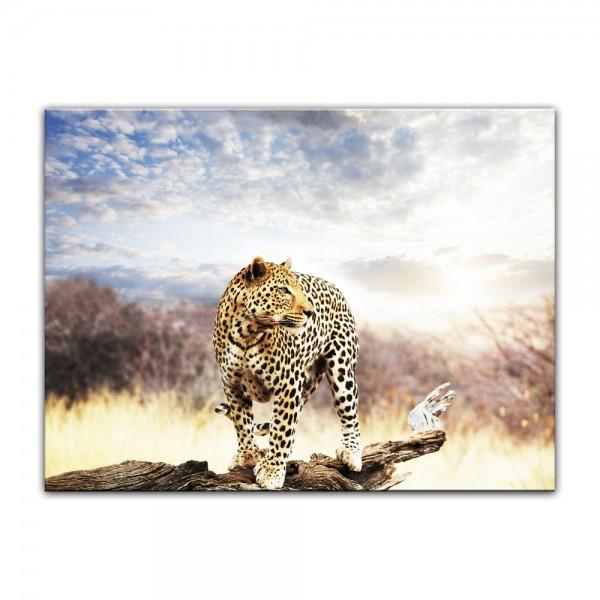 Leinwandbild - Leopard