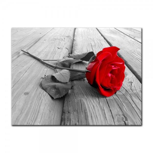 Leinwandbild - Rose Steg