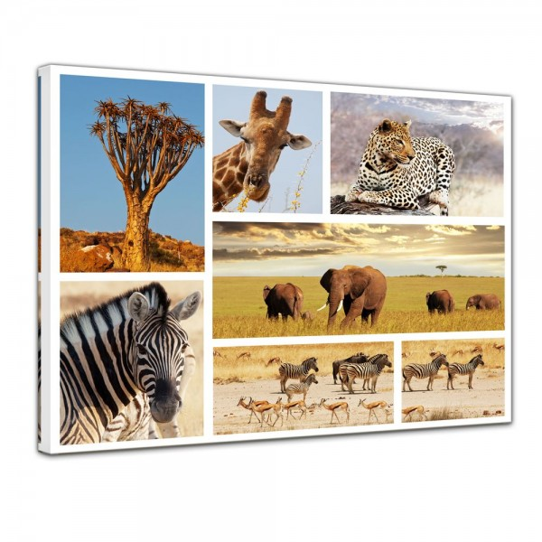 SALE Leinwandbild - Afrika Collage II - 60x50 cm