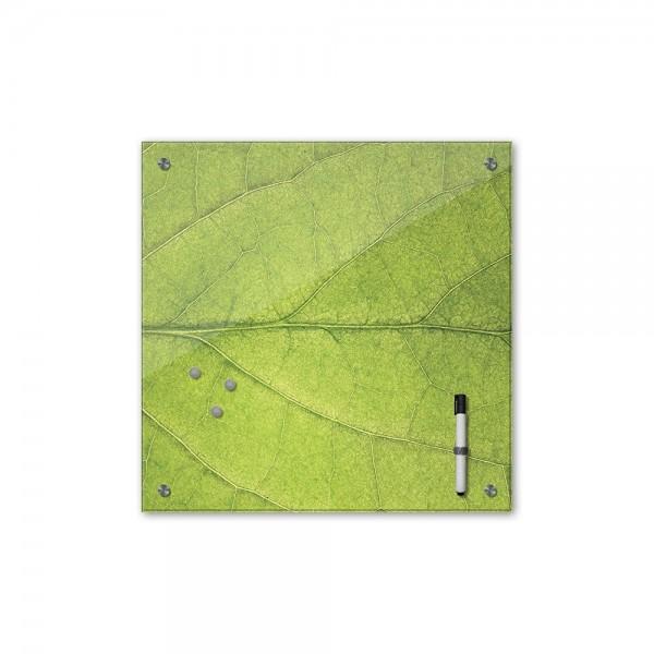 Memoboard - Pflanzen & Blumen - Blatt - 40x40 cm