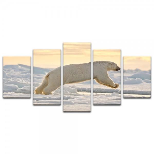 Leinwandbild - Eisbär im Sprung