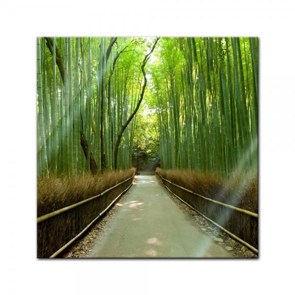Glasbild - Bambuswald in Arashiyama - Japan