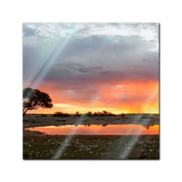 Glasbild - Malerische Buschlandschaft im Sonnenuntergang