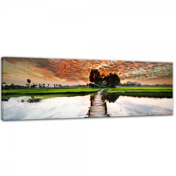SALE Leinwandbild - Tropischer Fluss - 120x40 cm